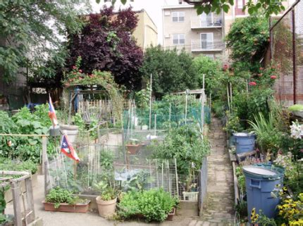 sustainable gardens in greenpoint williamsburg go green brooklyn