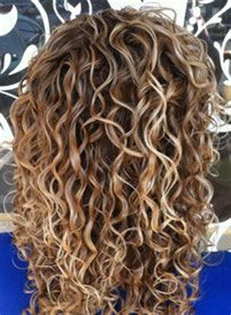 partial highlight pattern curly hair brown hair with blonde highlights and curly hair on pinterest