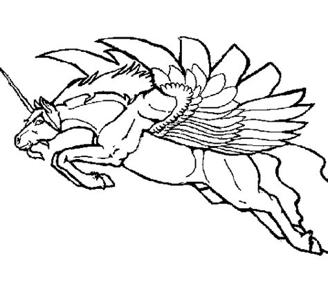 Winged Unicorn Coloring Pages Clipart Best Winged Unicorn Coloring Pages