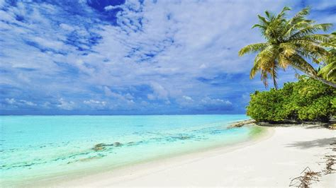 punta matira beach bora bora island tropical beach