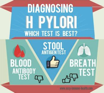 Can H Pylori Cause Blood In Stool by Image Gallery Helicobacter Pylori Test