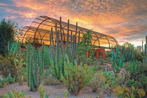 A Winter Oasis Escape To Scottsdale Ariz Travels With Scottsdale Botanical Gardens