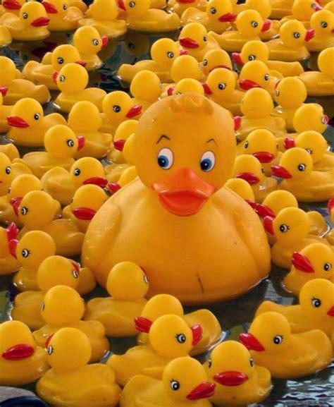 badezimmerdekor themen die besten 17 bilder zu ducky auf clipart