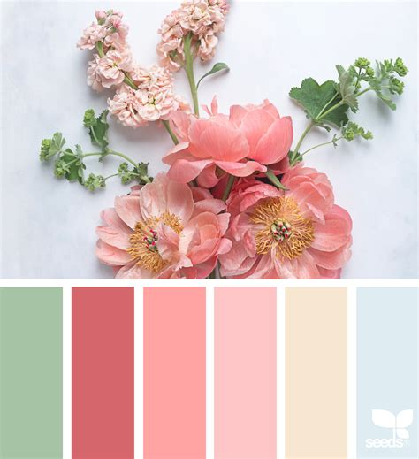 design seeds instagram flora tones design seeds