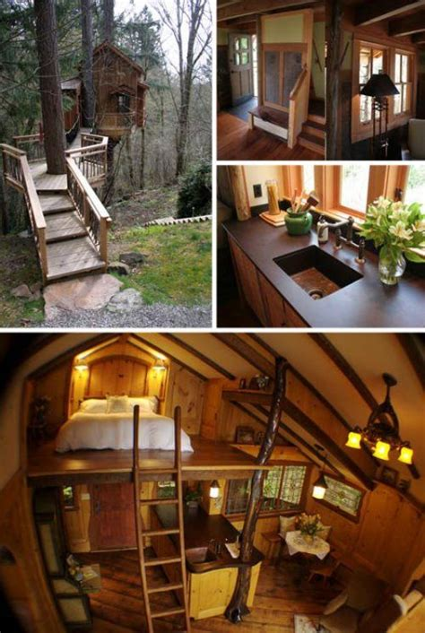 Livable Treehouse Tree House Cabins Pinterest Livable Tree House Plans