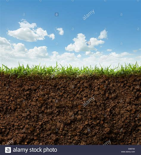 Soil Cross Section by Cross Section Of Grass And Soil Against Blue Sky Stock Photo Royalty Free Image 72733192 Alamy