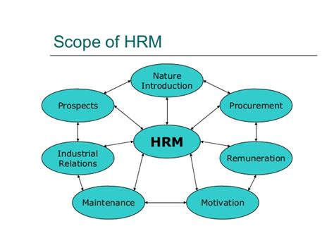 Government For Mba In Hr by Human Resource Management Mba