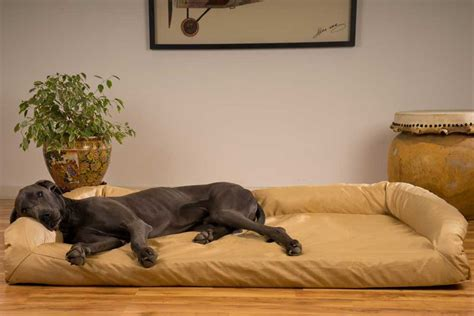 dog on bed large dog beds the 19 best dog beds for large dogs
