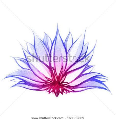 lotus flower tattoo color meaning 25 best ideas about purple lotus on