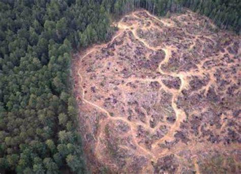 habitat loss conservation institute