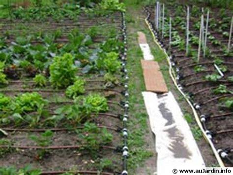 arrosage jardin potager installation d un arrosage automatique pour le potager