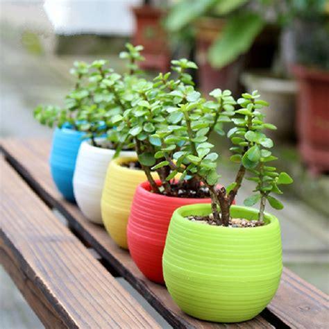 diy membuat pot bunga unik  taman  rumah gulalives