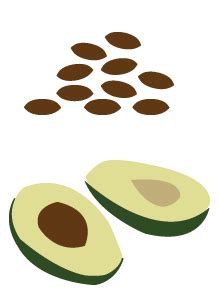healthy fats for your brain healthy fats are really important for your brain and your