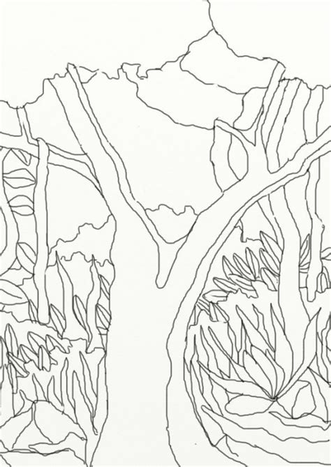 wild treasures amazon coloring pages