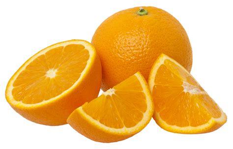 Citrus Tree Nursery by Buy Washington Navel Orange Trees