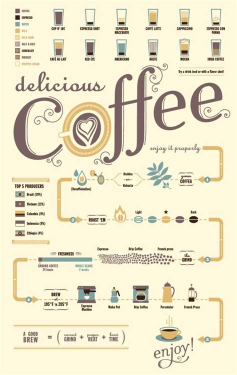 coffee flowchart coffee flow chart infographic