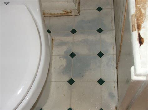 water under bathroom floor mold under vinyl flooring alyssamyers