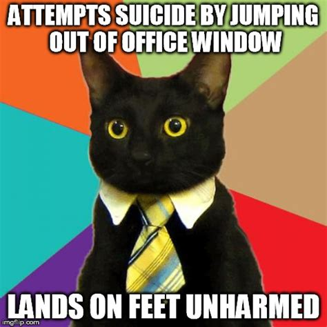 Office Window Meme - business cat memes hot imgflip