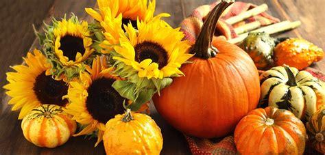 immagini fiori autunnali riciclo creativo d autunno scopri come farlo green it