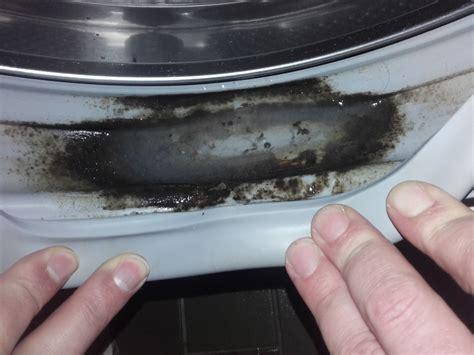 Geruch In Der Waschmaschine 6883 by Neue Waschmaschine Stinkt Was Tun