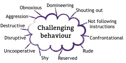 types of challenging behaviours session 3 all about behaviour houghton le
