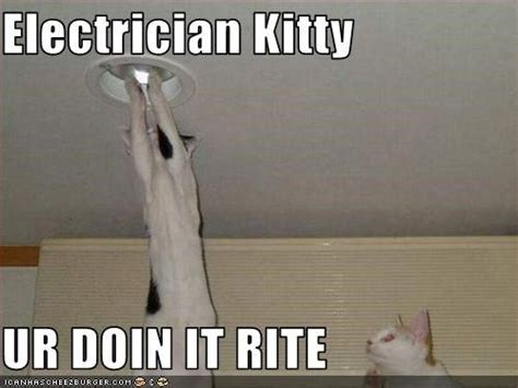 electrician humor humor