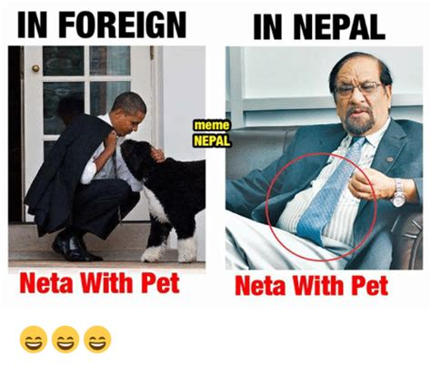 Neta Meme - in foreign in nepal meme nepal neta with pet neta with pet
