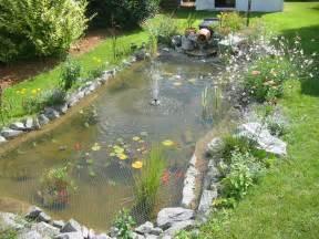 construire un bassin poisson au jardin photo bassin de jardin
