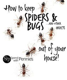 How To Keep Bugs Out Of Your Room by 1000 Images About For The Home On Safe Room