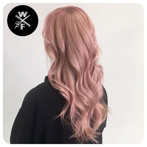 rose gold hair pravana rose gold on ratchetscott so in love with this color i