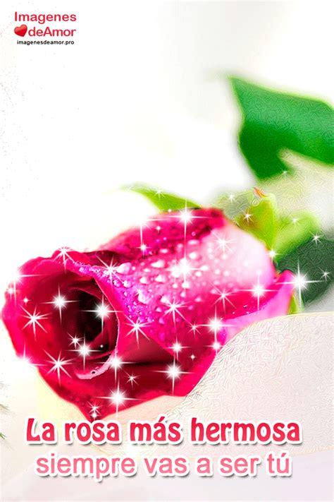 imagenes lindas videos 9 im 225 genes m 225 s lindas de amor con frases rom 225 nticas