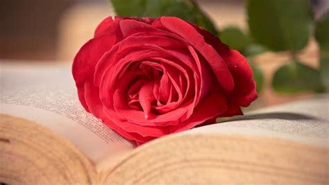 roses books