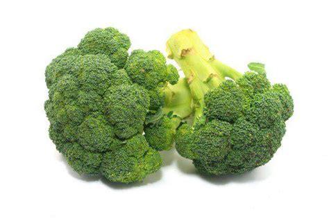 alimenti con calcio alimenti ricchi di calcio cause della carenza e fonti
