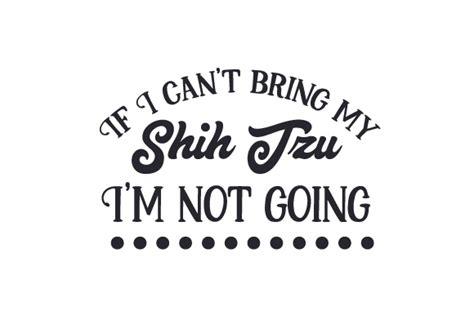 where can i buy a shih tzu if i can t bring my shih tzu i m not going creative fabrica