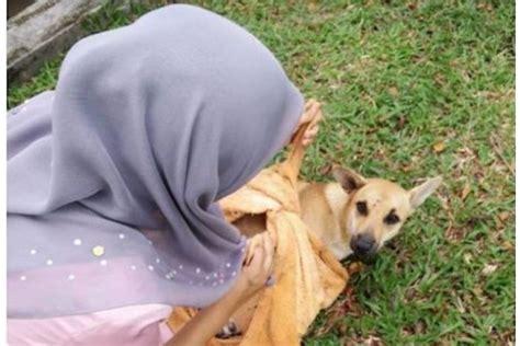 Handuk Anjing satu harapan perempuan muslim dipuji karena menyelamatkan anjing
