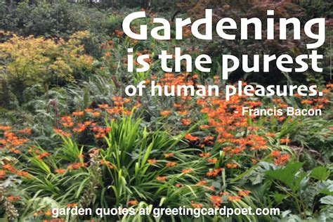 flower garden quotes garden quotes and gardening sayings flowers and plants