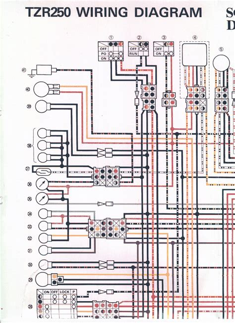 wiring diagram yamaha tzr wiring diagram and schematics