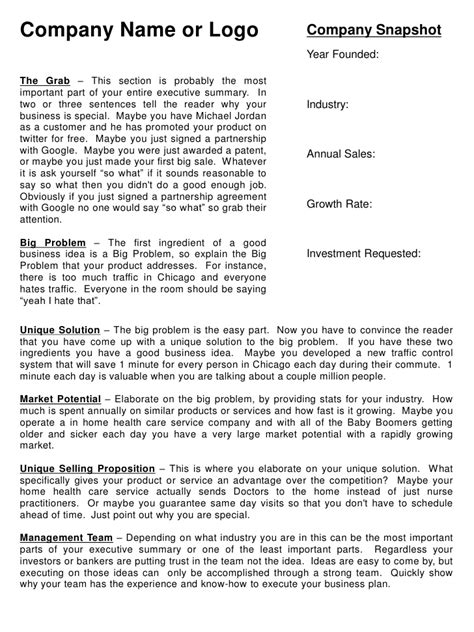 Executive Summary Template Business Overview Template