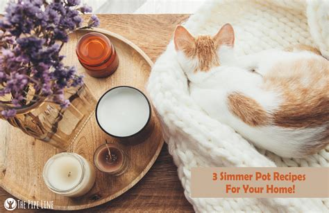 simmer pot recipes the pipe line diy fall simmer pots 3 aromas you ll swoon over