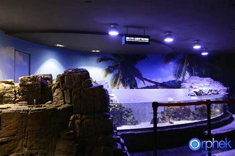 Lu Led Aquarium 2015 portfolio orphek aquarium led lighting