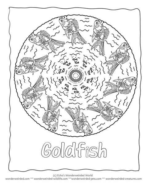 rainbow mandala coloring pages fish mandala coloring page goldfish coloring page 3 here