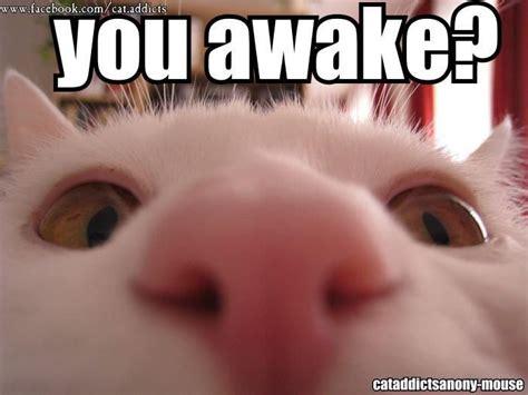 you awake pics and quotes pinterest