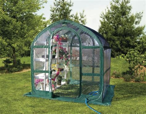 Greenhouse Patio by Flower House Fhsp300cl Springhouse Greenhouse