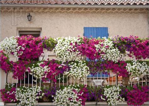 Balkonbepflanzung Ideen by Sch 246 Ne Ideen Mit Balkonpflanzen Die Terrasse Mit Blumen