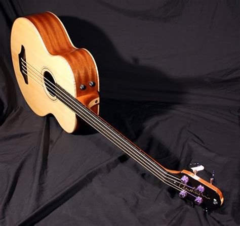 Dr Bass Accoustic is it possible for an unlified acoustic bass guitar to