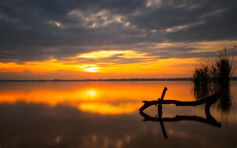 sunset peaceful lake water reeds cane orange sky dark