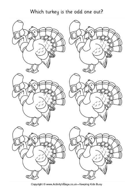 turkey odd one out