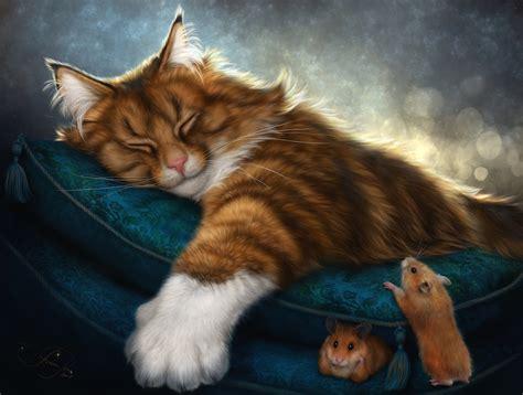 cat rat wallpaper cat full hd wallpaper and background 3000x2271 id 795825