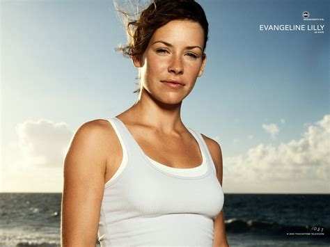 evangeline lilly  kate  lost wallpapers hd