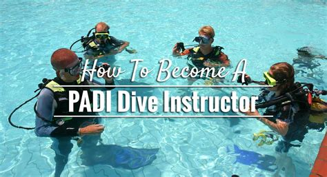 how to become a instructor how to become a padi dive instructor dive in